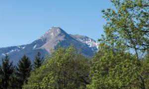 sentier n°6 : Juzet d'Izaut, la forêt du Cagire