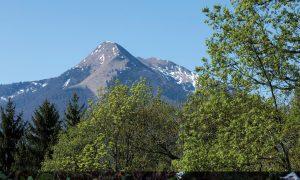 Sentier n°17 : Juzet d'Izaut-col de Buret, une forêt collinéenne