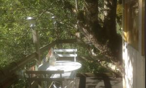 Cabane dans un pommier à la Ferme de Coulédoux