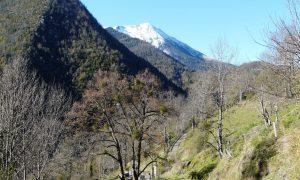 Ôde des Pyrénées