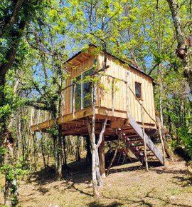 Les cabanes d'Orvé – La Canopée