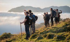 Greenthérapie et autres bruits de la forêt : rencontre avec Marc Chatonnay