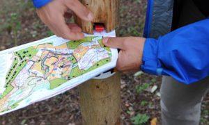 Trouver sa voie : A la découverte du Parcours d'Orientation