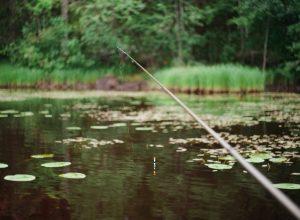 Hébergements pêche qualifiés